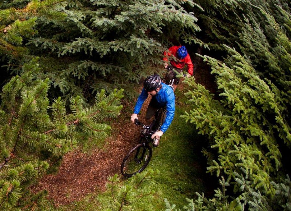 Gravel en forêt