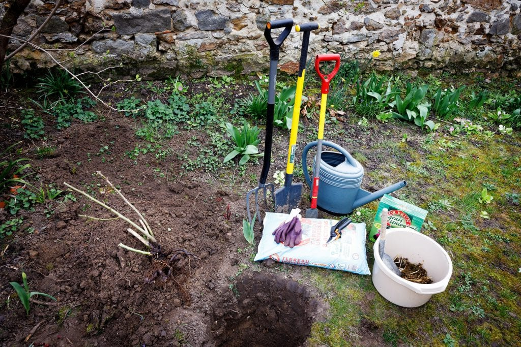 le matériel planter un rosier