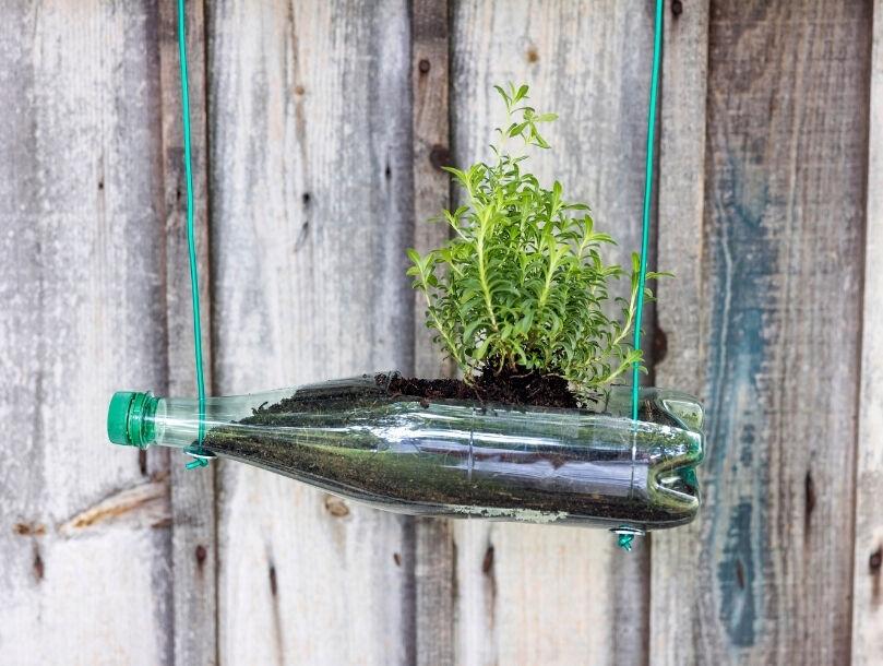 rendu final jardiniere bouteille