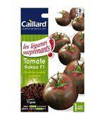 Tomate Kakao hybride F1 preview1