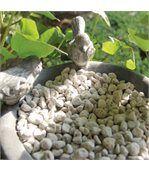 Soucoupe pour pot avec oiseaux gris preview1