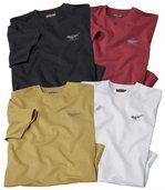 Lot de 4 Tee-shirts Arizona Colors preview1