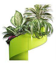 Pot de fleur mural design vert