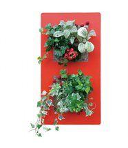 Cadre végétal mural double - rouge