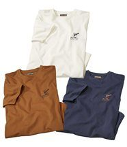 Lot de 3 Tee-Shirts Eagle Park