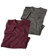Lot de 2 Tee-Shirts Col V