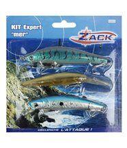 Zack kit 3 poissons nageurs mer