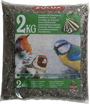 Sac de 2 kg de graines de tournesol pour oiseaux de jardin