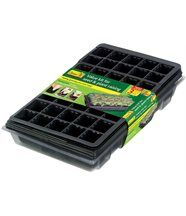 Kit semences faciles Grow it (Lot de 3)