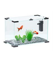Aquarium Nanolife first