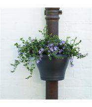 Pot de fleurs corsica clip gouttière - noir